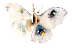 Blank greeting card of my moth watercolor. Fine Art print on lovely watercolor paper, wonderful as a special greeting card and suitable for Art And Illustration, Watercolor Animals, Watercolor Paintings, Watercolor Paper, Watercolours, Art Carte, Butterfly Art, Butterflies, Butterfly Watercolor