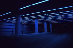It's all about the Night — rxcognise: blue glow blog, following back similar