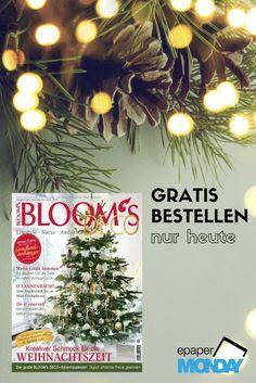 Entdeckt wunderschöne Last-Minute-Dekoideen für Haus und Weihnachtsbaum 🎄  🎁 Heute könnt ihr die aktuelle Bloom's gratis bestellen. Einfach Code BAUM einlösen: https://www.united-kiosk.de/epaperMonday/