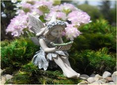 "Fairy ""KIM"" Shhh, Giggles! This Cute Little Fairy Needed A New Name!❥.• * • . ❥♡"