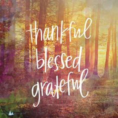 Thankful. Blessed. Grateful.