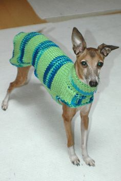 Custom Crocheted Small Dog Sweater in LimeAid. $39.99, via Etsy.