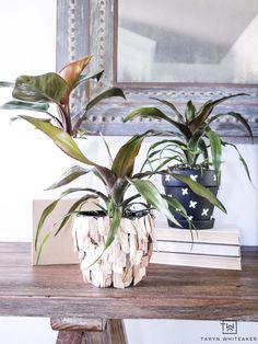 These DIY Indoor Pla