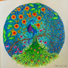Secret Garden Peacock Coloring Canvas