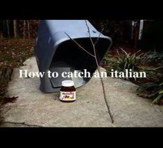 How to catch an Italian! Thought you all would like a chuckle