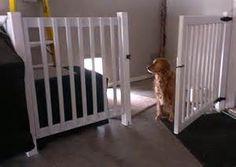 Tanner has always had an indoor/outdoor dog kennel in the garage. He ...