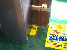 Efectivas trampas tritón, instaladas en la parte posterior de un refrigerador.