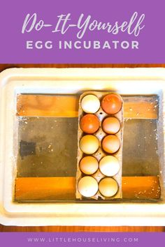 Ready to add some little ones to your homestead? Create your own DIY Egg Incubator and start hatching eggs with this tutorial! Do It Yourself Projects, Diy Projects To Try, Make It Yourself, Raising Farm Animals, Raising Chickens, Little House Living, Laying Hens, Egg Incubator, Modern Homesteading