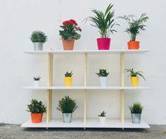 // SIMPLE & LOW BUDGET // Wall Shelf
