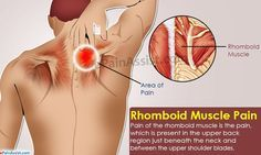 Pain of the rhomboid muscle is the pain which is present in the upper back region just beneath the neck and between the upper shoulder blades. Know its causes signs symptoms exercises stretches and prevention. Shoulder Pain Relief, Neck Pain Relief, Neck And Shoulder Pain, Muscles In Shoulder, Pinched Nerve In Shoulder, Shoulder Blade Stretch, Shoulder Rehab, Shoulder Surgery, Scoliosis Exercises