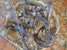 Materiali per composizioni: i baccelli secchi dell'oleandro