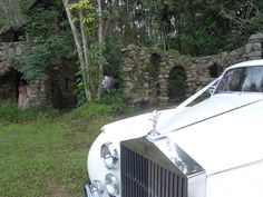 Somerton Limousines' Rolls-Royce Silver Cloud (Lily).