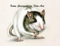 Rat ACEO print Mischievous by Irina Garmashova by irinagarmashova
