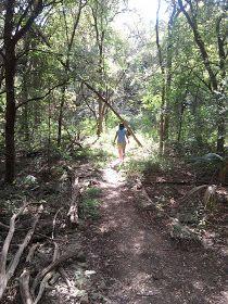 10 best hikes in Austin