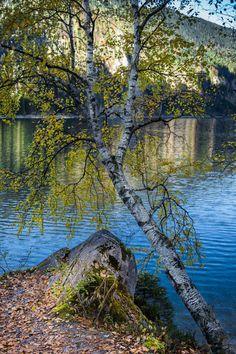 Gosausee, Austria (by Nexter)