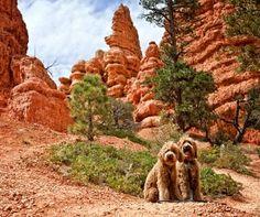 Luke and Sam at Red Rock Canyon