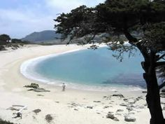 Carmel by the sea, California. Probably the prettiest place I have ever lived. Awakened the need to live by the ocean