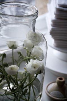 bloem in glas