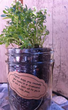 Bible Class Craft - accompanied Palm Sunday less, last supper, prayer in the garden, and crucifixion. Children are encouraged to pray persistently and to use mini garden to remind themselves. Scripture is 1 Thessalonians 5:16-18.