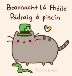 Pusheen the cat - every day is St. Patrick's day! bonus point for translating!