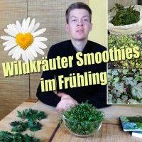 Grüne Wildkräuter Smoothies im Frühling