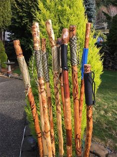 BEYOND THE BEACH - Walking sticks and canes