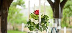 Plants, Wedding, Nice Asses, Plant, Planets
