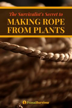 The Survivalists Guide to Making Rope from Plants. Making a rope from a plant is an incredible asset in wilderness survival. Survival Life, Survival Food, Homestead Survival, Wilderness Survival, Outdoor Survival, Survival Prepping, Survival Skills, Survival Hacks, Survival Equipment