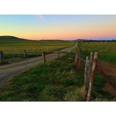 One of the many things Instagrammer tinkertines loves about Canberra is finding country roads in the city.