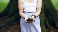learning to grow. by Casey David, via Flickr