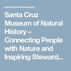 Santa Cruz Museum of Natural History – Connecting People with Nature and Inspiring Stewardship of the Natural World