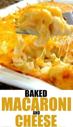 homemade macaroni & cheese with a secret ingredient you wouldn't have guessed! homemade macaroni & cheese with a secret ingredient you wouldn't have guessed! Homemade Macaroni Cheese, Baked Macaroni Cheese, Mac Cheese, Baked Cheese, Pasta Cheese, Cheese Food, Cheddar Cheese, Pot Pasta, Pasta Dishes