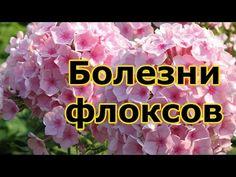 Начинаем вязать – Видео уроки вязания » Узор тунисского вязания со спущенными столбиками №67