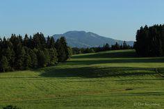 Die Raumfee: Abendsonne bei Rückholz, Allgäu