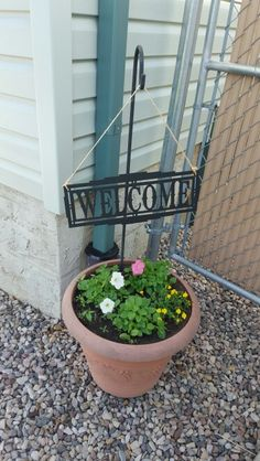 Welcome Plants, Flora, Plant, Planting