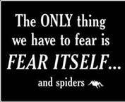 humor spiders - Bing Images