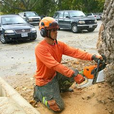 We want to help you be safe and increase the value of your property with Tree care call for free estimate 6475458733