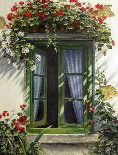 Geranium Window
