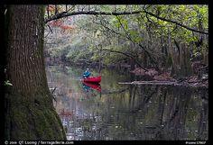Canoe on Cedar Creek framed by overhanging branch. Congaree National Park, South Carolina, USA.