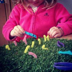 fijne motoriek - wormpjes vangen met een wasknijper