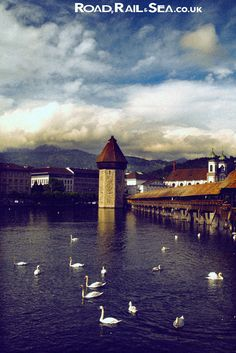Chapel Bridge and Water tower, Lucerne.