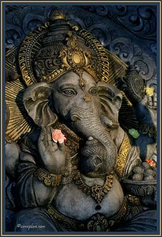 Make this Ganesha Chathurthi 2020 special with rituals and ceremonies. Lord Ganesha is a powerful god that removes Hurdles, grants Wealth, Knowledge & Wisdom. Jai Ganesh, Ganesh Lord, Ganesh Statue, Lord Shiva, Elephant Head, Elephant Love, Om Gam Ganapataye Namaha, Ganpati Bappa, Shiva Shakti