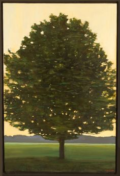 The Tree with the Lights in it - Jon Macadam (Print)