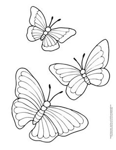 Printable Coloring Pages Of Butterfly 008 Printables Pinterest