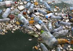 The Oceans Will Contain More Plastic Than Fish by 2050.