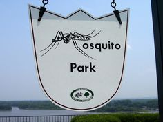 Mosquito Park in Burlington, Iowa, a favorite picnic place for my family. I have many happy memories of being here.