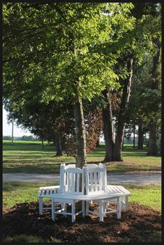 Easier way to create a bench around a tree! Love this idea.