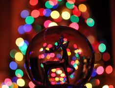 globe christmas lights - Google Search