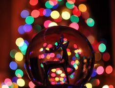 globe christmas lights - Google Search