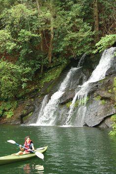 LAKE JOCASSEE • SOUTH CAROLINA and nine other flatwater paddling camping itineraries